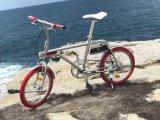 Bici elettrica astuta del sistema di azionamento