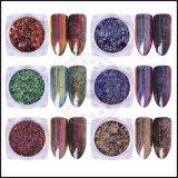 Éclailles de scintillement de Salon de manucure de manucure de galaxie de la poussière de produits de beauté