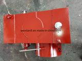 플라스틱 압출기를 위한 최신 판매 Zlyj173 기어 흡진기