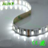 300LEDs impermeabile 60W Alto-Brightess con gli indicatori luminosi di striscia di colore SMD5050 LED di W/R/G/B per la decorazione della vetrina/mercato/hotel