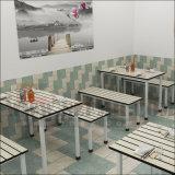 Het Meubilair van het restaurant/de Lijsten van het Restaurant en Stoelen/de de Vuurvaste Lijst en Banken van het Restaurant