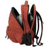 Sacchetto di banco del pacchetto del sacchetto del dispositivo di raffreddamento dello zaino