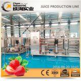 가득 차있는 자동적인 완전한 딸기 주스 생산 라인