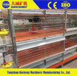 Matériel de ferme avicole de poulet pour la qualité de cage de grilleur de production de viande