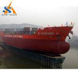 Carguero de graneles (MPP) 6500 Dwt de China