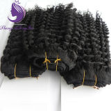 Kinky Curly Indian Virgin Remy Hair Weft