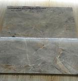 azulejos de la porcelana de Desin de la impresión de las baldosas cerámicas 3D del azulejo de suelo 60X60