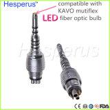 Tipo accoppiatore rapido ottico di Kavo dell'accoppiamento dei fori LED dell'accoppiatore 6 di Multiflex dell'accoppiamento di Handpiece della fibra