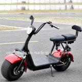 fetter Gummireifen Usun Harley Citycoco Electrical&#160 des Rad-1500W; mit Cer
