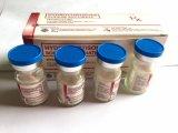 De injectie van Hydrocortisone Natrium voor het Redden van kritisch Zieke Patiënten