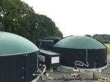 Progetti del biogas per un'azienda agricola della mucca