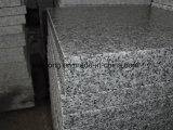 Il granito grigio-chiaro poco costoso G603 fiammeggiato/ha lucidato/mattonelle pavimentazione di Bushhammered