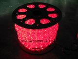 lumière de corde plate de 5-Wire DEL, lumière de bande