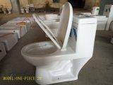 Lavabo de cerámica caliente One-Piece Super Siphonic wc con Ce/Saso