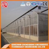 Shengqiang Multi-Überspannung Polycarbonat-Gewächshaus für die Landwirtschaft