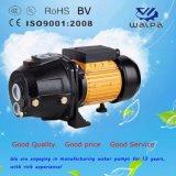 高いヘッド0.75HP Dp255が付いている深い井戸の水ポンプ