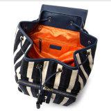 Grosser täglicher Gebrauch-Unisextendenz-Streifen-Segeltuch-Rucksack der Kapazitäts-Yc-H252