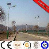 15W - 160W Luz solar de la calle con el panel solar, regulador y la batería