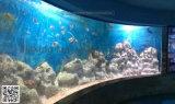 Acryl Aquarium Mr007