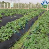 Agriculture를 위한 100% PP Material Nonwoven Fabric