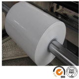Vente en gros BOPP Film Coex One / Two Sides Heat Sealable BOPP Film