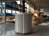 Générateur à un aimant permanent sans frottoir de 2kw 48V/96V Pma