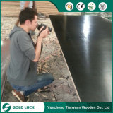 4 * 8 Black Film Faced Plywood Timber Board