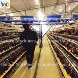Matériel agricole pliant la cage se pliante de poulet de couche de batterie automatique