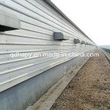 La estructura de acero de alta calidad de la casa granja avícola
