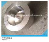 Protezioni senza giunte degli accessori per tubi dell'acciaio inossidabile di ASTM