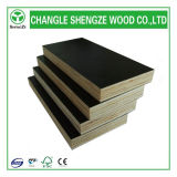 1220*2440mm WBP Shuttering Film Faced Plywood