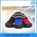 Support en gros de produit d'animal familier d'usine et grandes chaussures de crabot d'animal familier