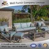 Disposizione dei posti a sedere profonda buona del vimine 6PC di Furnir Wf-17082