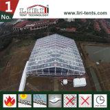 Transparentes 20X40m grande tenda para a parte exterior