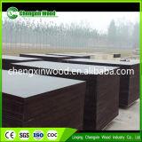 Melamina pressionada quente de duas vezes/madeira compensada padrão Phenolic