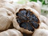 Ail noir d'effets salutaires nutritifs pour le corps