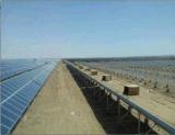 Pile de vis d'homologation du marché de globe avec la plaque dans l'énergie solaire