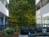 Высокое качество Искусственные растения и цветы в саду Gu-Wall05182910 по вертикали