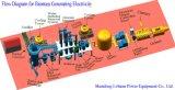 Cáscara de pajas de madera Generador de gas de gasificación de biomasa o Generador de precios