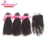 Cheveu 100% cru de Vierge de Vierge malaisienne bon marché noire normale de cheveu