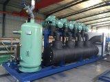 Compressore di refrigerazione dell'unità di parallelo della vite di temperatura insufficiente di Bitzer Bitzer