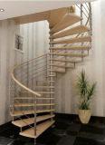 Escadaria espiral de vidro interior com os trilhos do aço inoxidável e o passo antiderrapante