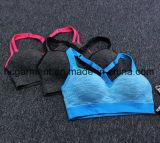Sutiã de esportes rapidamente seco para mulheres / Lady, roupas corridas, Yoga Wear