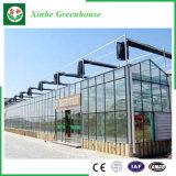 Verre/Creux vert en verre trempé de maisons avec système de ventilation