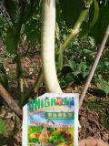 Vegetal que planta com fertilizante microbiano do solo de Unigrow