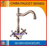 Faucet de bronze de acabamento de cor de moda (CB-21225A)