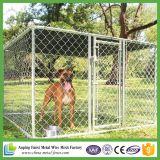 大きいスペース錆抵抗の高品質犬のケージ