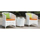 Muebles al aire libre de la venta del negro del PE del jardín caliente de la rota para el jardín