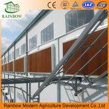 mm kundenspezifische abkühlende Auflage der Größen-2000*600*150 für landwirtschaftliches Gewächshaus