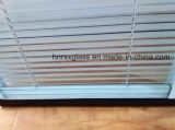 Blind machen-Zwischen-Glas Fenster u. Tür-isolierendes Glas mit Vorhängen